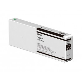 Epson Tinte T804700 Light Black