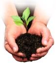 Ricoh Aficio SP 6330N Umweltfreundlichkeit